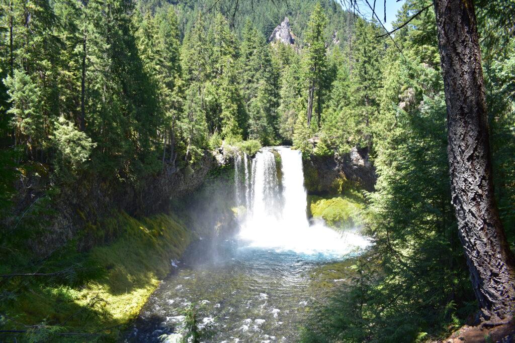 Koosah Falls Wide Angle
